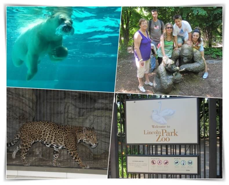 lincoln park zoo - Chicago en 4 días