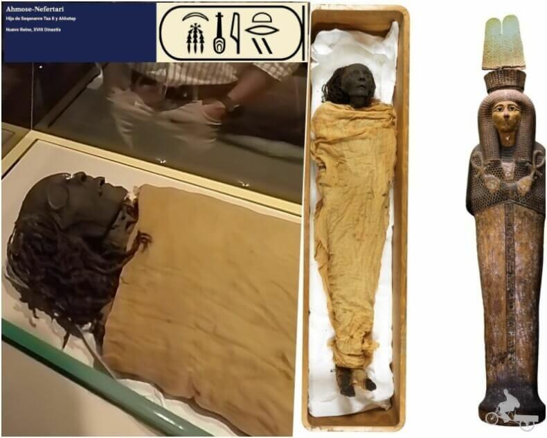 Ahmose Nefertari - momias egipcias reales