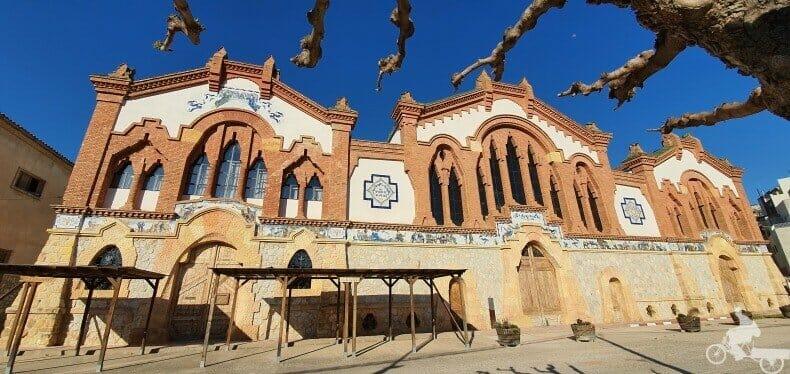 fachada catedral del vi