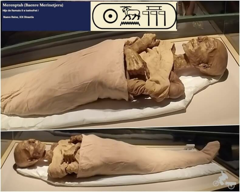 momia de Merenptah