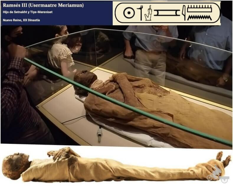 momia de Ramses III