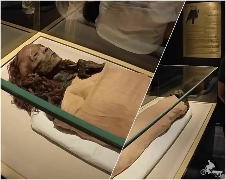 momia de Tiye - momias egipcias reales