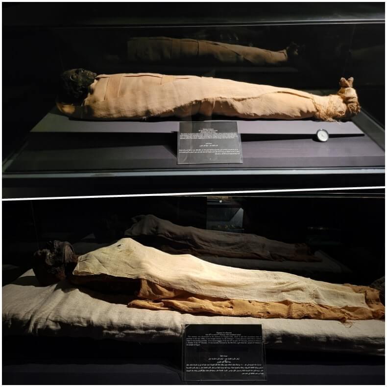 Momias de Ahmose y de Ramsés I